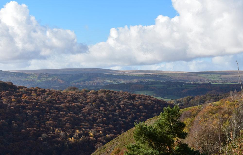 Visit Dartmoor - Kiddicott Farm